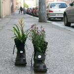 Guerrilla Gardening : se bombe devono essere, che siano di semi!